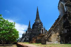 Ayutthaya ruins, buddhist temple Royalty Free Stock Photo