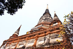 ayutthaya stary rujnujący świątynny Thailand Zdjęcie Stock