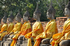 Ayutthaya, Tailândia: Estátuas de Buddhas em Wat tailandês Fotos de Stock Royalty Free