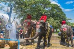 AYUTTHAYA, TAILANDIA - 14 DE ABRIL: Los jaraneros gozan del agua que salpica con los elefantes durante el festival de Songkran el Fotografía de archivo