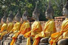 Ayutthaya, Tailandia: Estatuas de Buddhas en Wat tailandés Fotos de archivo libres de regalías