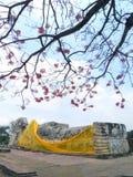 AYUTTHAYA, TAILANDIA: Il grande Buddha adagiantesi con un luminoso o Fotografia Stock