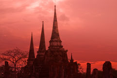 Ayutthaya, Tailândia: Wat Phra Si Sanphet Fotografia de Stock Royalty Free