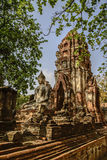 Ayutthaya temple Stock Image