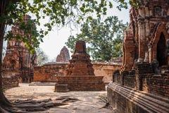 Ayutthaya temple ruins, Wat Maha That Ayutthaya as a world heritage site, Thailand. Royalty Free Stock Images