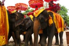 Ayutthaya, Thaïlande. Images stock