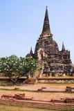 Ayutthaya, Thaïlande Photos libres de droits