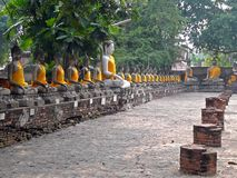 Ayutthaya, Thailand. Ancient temple in Ayutthaya, Thailand with the sculptures of Buddha sitting in a row and yellow cloth on them Stock Photos