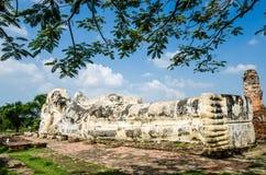 Ayutthaya Thailand Arkivbilder