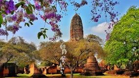ayutthaya thailand Royaltyfri Fotografi