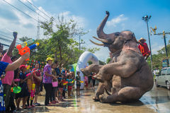 AYUTTHAYA, THAILAND - APR 14: Revelers enjoy water splashing with elephants during Songkran Festival on Apr 14, 2016 in Ayutthaya, Royalty Free Stock Photography
