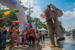 AYUTTHAYA, THAILAND - APR 14: Revelers enjoy water splashing with elephants during Songkran Festival on Apr 14, 2016 in Ayutthaya, Stock Photos