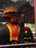 Ayutthaya Thailand - April 29, 2014 Elefanten som anv?nds f?r sight, turnerar fotografering för bildbyråer