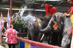 AYUTTHAYA THAILAND - APRIL 13: Rumlare tycker om plaskande intelligens för vatten Royaltyfri Bild