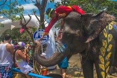 AYUTTHAYA THAILAND - APRIL 14: Rumlare tycker om vatten som plaskar med elefanter under den Songkran festivalen på April 14, 2016 Royaltyfri Foto