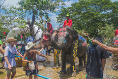 AYUTTHAYA THAILAND - APRIL 14: Rumlare tycker om vatten som plaskar med elefanter under den Songkran festivalen på April 14, 2016 Royaltyfri Bild