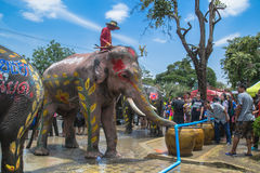 AYUTTHAYA THAILAND - APRIL 14: Rumlare tycker om vatten som plaskar med elefanter under den Songkran festivalen på April 14, 2016 Royaltyfria Foton