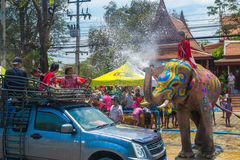 AYUTTHAYA THAILAND - APRIL 14: Rumlare tycker om vatten som plaskar med elefanter under den Songkran festivalen på April 14, 2016 Royaltyfria Bilder