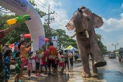 AYUTTHAYA THAILAND - APRIL 14: Rumlare tycker om vatten som plaskar med elefanter under den Songkran festivalen på April 14, 2016 Arkivfoton