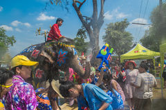 AYUTTHAYA THAILAND - APRIL 14: Rumlare tycker om vatten som plaskar med elefanter under den Songkran festivalen på April 14, 2016 Royaltyfri Fotografi