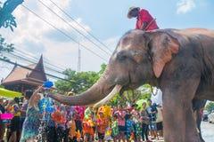 AYUTTHAYA THAILAND - APRIL 14: Rumlare tycker om vatten som plaskar med elefanter under den Songkran festivalen på April 14, 2016 Arkivbild
