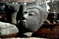 Ayutthaya, Thailand: Buddha Head stock images