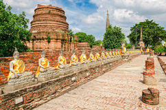 Ayutthaya (Thailand), Buddha statues Stock Photography
