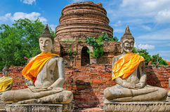 Ayutthaya (Thailand), Buddha statues in an old temple Royalty Free Stock Images