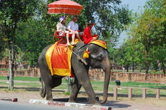 Ayutthaya, Thailand: Elephant Riding Stock Photo