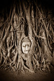 Ayutthaya Thailand Julian Bound Fotografering för Bildbyråer