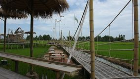 Landscape wooden bridge in rice field at countryside in Ayutthaya, Thailand. AYUTTHAYA, THAILAND - JULY 23 : Thai people and foreign travelers travel visit walk stock video