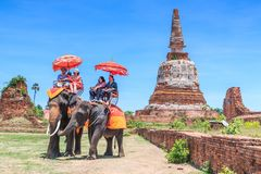Free AYUTTHAYA, THAILAND - JUNE 1: Tourists On An Elephant Ride Tour Royalty Free Stock Images - 101811819
