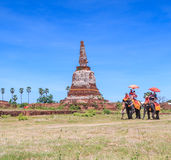 AYUTTHAYA, THAILAND - JUNE 1: Tourists on an elephant Royalty Free Stock Photos