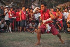 AYUTTHAYA, THAILAND - MAART 17.2013: De volwassen mannelijke Aziatische vechtsportenmeester toont plechtige dans Royalty-vrije Stock Foto