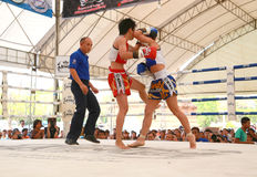 Women Thai boxing match Royalty Free Stock Photos