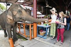 Ayutthaya Thailand, November 7, 2015 livet i den Ayutthaya floaen Royaltyfri Fotografi