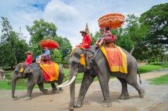 Ayutthaya,Thailand - October 11,2015: The touris on elephant  wa Stock Image