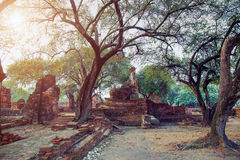 Ayutthaya, Thailand Stock Photos