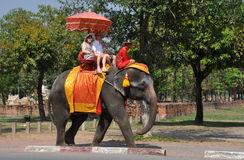Ayutthaya, Thailand:  Visitors Riding an Elephant Royalty Free Stock Photos