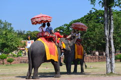 Ayutthaya, Thailand: Visitors Riding an Elephant Royalty Free Stock Photo