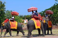 Ayutthaya, Thailand: Visitors Riding an Elephant Royalty Free Stock Images