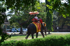 Ayutthaya, Thailand: Visitors Riding an Elephant Stock Photography