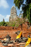 Ayutthaya, Thailand:  Wat Ratcha Burana. Seated Buddha statues, some little but fragments, sit next to a wall at 15th century Wat Ratcha Burana with the Stock Image