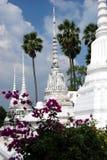 Ayutthaya, Thailand: Wat Suwandararam Chedis Royalty Free Stock Photography