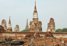 Ayutthaya - Wat Phra Sri Sanphet - Thailand Royalty Free Stock Photo