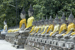 ayutthayabuddha statyer thailand Arkivfoton
