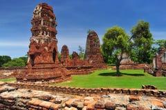 ayutthayamahatadthailand wat Royaltyfri Fotografi