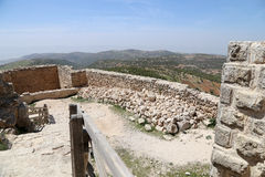 The ayyubid castle of Ajloun in northern Jordan, built in the 12th century, Middle East Royalty Free Stock Photo