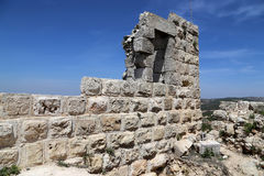 The ayyubid castle of Ajloun in northern Jordan, built in the 12th century, Middle East Stock Photo