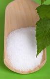 Azúcar del abedul del xilitol en la cucharada de madera sobre verde Imágenes de archivo libres de regalías